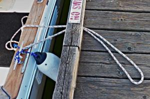 How-to-Tie-Your Boat-to-a-Bull-Rail–Part-2-Step-1